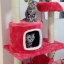 MU0055 คอนโดแมวสามชั้น ต้นไม้แมว มีบ้านอุโมงค์ เปล ของเล่นแขวน สูง 105 cm thumbnail 2
