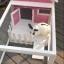 บ้านส่วนตัวของสัตว์เลี้ยงlสำเร็จรูป ชั้นเดียว มีระเบียงและบริเวณส่วนหน้าบ้าน thumbnail 2