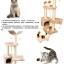คอนโดแมวสามชั้น ต้นไม้แมว ที่ฝนเล็บ มีของเล่นแขวน thumbnail 12