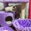 MU0057 คอนโดแมวสามชั้น ต้นไม้แมว มีบ้านอุโมงค์ กระบะนอน ของเล่นแขวน สูง 75 cm thumbnail 9
