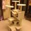 MU0060 คอนโดแมวห้าชั้น ต้นไม้แมว มีบ้านอุโมงค์สองชั้น ของเล่นแขวน สูง 150 cm thumbnail 5