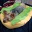 ที่นอนสัตว์เลี้ยงฮอทด็ก ขนนิ่มอบอุ่น thumbnail 12