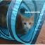 MU0014 อุโมงค์ที่นอนแมว เกลียวตาข่าย มีเบาะรองนั่ง ระบายอากาศได้ดี Spiral cat bed Fashion spiral cat litter thumbnail 3