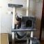 MU0052 คอนโดแมวห้าชั้น ต้นไม้แมว มีเปลไว้นอนพักผ่อน สูง 145 cm thumbnail 8