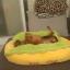 ที่นอนสัตว์เลี้ยงฮอทด็ก ขนนิ่มอบอุ่น thumbnail 9