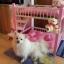 เตียงนอนไม้สำหรับหมาแมว มีหลายขนาด แบบ 2 ชั้น มีบันไดขึ้นลงด้านข้าง รุ่นยอดนิยม thumbnail 10
