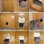 ประตูหมาแมว ประตูเล็กสำหรับให้หมาแมวเข้าออกได้เอง thumbnail 5