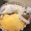 ที่นอนคัพเค็กแสนหวานสำหรับสัตว์เลี้ยง thumbnail 1