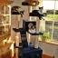 MU0061 คอนโดแมวเจ็ดชั้น ขนาดใหญ่ ต้นไม้แมว มีบ้านอุโมงค์สองชั้น ของเล่นแขวน สูง 180 cm thumbnail 18