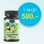 อาหารเสริม นมเม็ด AuswellLife Colostrum Tablet 1,000 mg. IgG 60 mg. 1 ขวด 60 เม็ด thumbnail 1