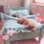 เตียงไม้สำหรับสัตว์เลี้ยงสไตล์วินเทจ พร้อมชุดเครื่องนอน ขนาดเล็กและขนาดกลาง thumbnail 7