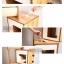 บ้านไม้ ที่นอนแมว เป็นที่ลับเล็บในตัว ขนาดใหญ่ ไม้เนื้อแข็ง thumbnail 4