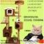 คอนโดแมว บ้านแมว นอนได้ 4 ตัว สูง 170 cm thumbnail 1