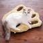 MU0017 เบาะนอนแมว Tada กำมะหยี่ น่ารักรูปร่างรอยเท้าการ์ตูน หนานุ่ม thumbnail 6