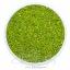 ลูกปัดเม็ดทราย 12/0 โทนรุ้ง สีเขียวตอง (100 กรัม) thumbnail 1