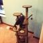 คอนโดแมว ต้นไม้แมว ของเล่นแขวน กระบะนอนพัก สูง 128 cm thumbnail 5