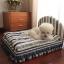 เตียงนอนสัตว์เลี้ยงฟองน้ำ ผ้าฝ้าย มีทั้งขนาดเล็กจนถึงใหญ่ น้องโกลเด้นท์นอนได้สบายค่ะ thumbnail 1