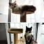 MU0008 คอนโดแมวสี่ชั้น ต้นไม้แมว ขนาดกลาง cat tree มีอุโมงค์ให้ซ่อนหาและงีบพักผ่อน สูง 151 cm thumbnail 8
