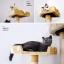 MU0006 คอนโดแมวหกชั้น ต้นไม้แมว ขนาดใหญ่ cat tree สูง 185 cm thumbnail 2