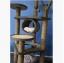 คอนโดแมว ต้นไม้แมว ของเล่นแขวน กระบะนอนพัก สูง 128 cm thumbnail 2