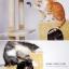 MU0006 คอนโดแมวหกชั้น ต้นไม้แมว ขนาดใหญ่ cat tree สูง 185 cm thumbnail 14