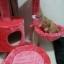 MU0057 คอนโดแมวสามชั้น ต้นไม้แมว มีบ้านอุโมงค์ กระบะนอน ของเล่นแขวน สูง 75 cm thumbnail 7