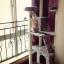MU0068 คอนโดแมวหกชั้น ขนาดใหญ่ ต้นไม้แมว มีบ้านอุโมงค์สองชั้น ของเล่นแขวน บันได สูง 180 cm thumbnail 1