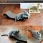 MU0003 โซฟาแมว ROMA TADA ที่ลับเล็บแมว ที่ฝนเล็บแมว ป้องกันแมวน้อยซนข่วนเฟอร์นิเจอร์ในบ้าน thumbnail 5