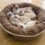 ที่นอนหมาแมวทรงกลมขนาดใหญ่ สีน้ำตาลอ่อน สีน้ำตาลเข้ม thumbnail 5