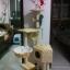 MU0056 คอนโดแมวห้าชั้น ต้นไม้แมว มีบ้านอุโมงค์ กระบะนอน ของเล่นแขวน สูง 150 cm thumbnail 11