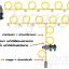 ชุดลากสายพ่นยา ก้านพ่นยา ( 30 cm ) สาย 50 m ปั๊ม 12VDC 100W 11 บาร์ ( pressure switch ) thumbnail 4