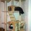MU0061 คอนโดแมวเจ็ดชั้น ขนาดใหญ่ ต้นไม้แมว มีบ้านอุโมงค์สองชั้น ของเล่นแขวน สูง 180 cm thumbnail 4