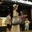 กระเป๋าสะพายสำหรับใส่สัตว์เลี้ยงเวลาเดินทางแบบโปร่งใส thumbnail 3
