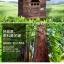 บ้านไม้หมาน้อยยกพื้น บ้านส่วนตัวของหมาน้อยขนาดกระทัดรัด สีน้ำตาลธรรมชาติ thumbnail 8