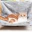 เปลนอนแมวแบบแขวนติดผนัง แขวนปลายเตียง นุ่มสบาย thumbnail 1