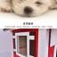 บ้านไม้หมาน้อยยกพื้น บ้านส่วนตัวของหมาน้อยขนาดกระทัดรัด สีแดง thumbnail 3