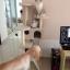 MU0060 คอนโดแมวห้าชั้น ต้นไม้แมว มีบ้านอุโมงค์สองชั้น ของเล่นแขวน สูง 150 cm thumbnail 3