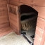 บ้านส่วนตัวสุนัขสำเร็จรูป Dog House King Golden Kennel thumbnail 4