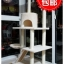 MU0063 คอนโดแมวห้าชั้น ต้นไม้แมว มีบ้านอุโมงค์ กระบะนอน ของเล่นแขวน สูง 150 cm thumbnail 1