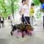 รถเข็นสำหรับสัตว์พิการ วีลแชร์หมา วีลแชร์แมว วีลแชร์สำหรับสัตว์เลี้ยงอายุมาก ขนาดใหญ่ 4 ล้อ รุ่น LLG-27 thumbnail 2