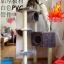 MU0056 คอนโดแมวห้าชั้น ต้นไม้แมว มีบ้านอุโมงค์ กระบะนอน ของเล่นแขวน สูง 150 cm thumbnail 12