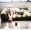 ที่นอนสุนัขมีพร้อมหมอนข้างสำเร็จรูป มี 2 ขนาด thumbnail 2