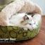 ที่นอนแมว Hamburger Cat Bed thumbnail 4