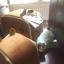 บ้านที่นอนสัตว์เลี้ยง อบอุ่นและนอนสบาย สีน้ำตาล มี 2 ไซส์ thumbnail 6