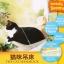 คิตตี้เตียงแมวเปลญวน ติดข้างฝา ติดกระจก ให้แมวน้อยชมวิว thumbnail 4