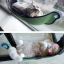 เปลญวณแมว ติดผังกระจกสำหรับชมวิว อาบแดด แข็งแรงทนทาน thumbnail 14