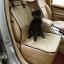 Pet Carrier Dog Car Seat Pad Safe Carry House Cat Puppy Bag thumbnail 4