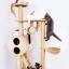 MU0008 คอนโดแมวสี่ชั้น ต้นไม้แมว ขนาดกลาง cat tree มีอุโมงค์ให้ซ่อนหาและงีบพักผ่อน สูง 151 cm thumbnail 3