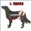 รถเข็นสำหรับสัตว์พิการ วีลแชร์หมา วีลแชร์แมว วีลแชร์สำหรับสัตว์เลี้ยงอายุมาก ขนาดเล็ก สำหรับขาหลัง รุ่น CF-01 thumbnail 7
