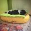 ที่นอนสัตว์เลี้ยงฮอทด็ก ขนนิ่มอบอุ่น thumbnail 4